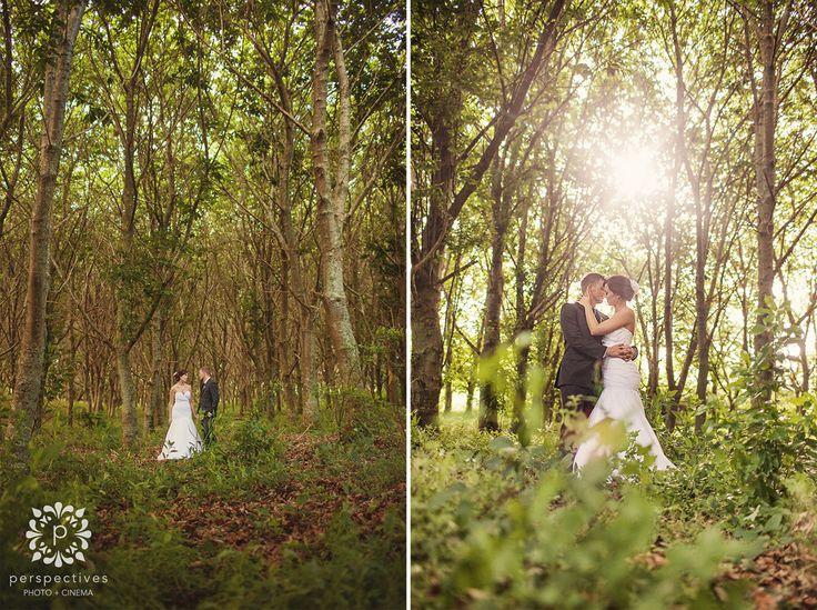 forest wedding photos nz