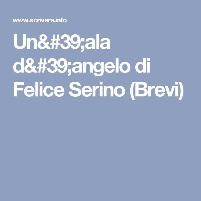 Un'ala d'angelo di Felice Serino (Brevi)