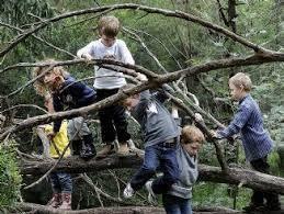 Outdoor Kindergarten Programs Melbourne Australia