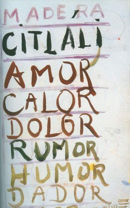 Fridas Journal