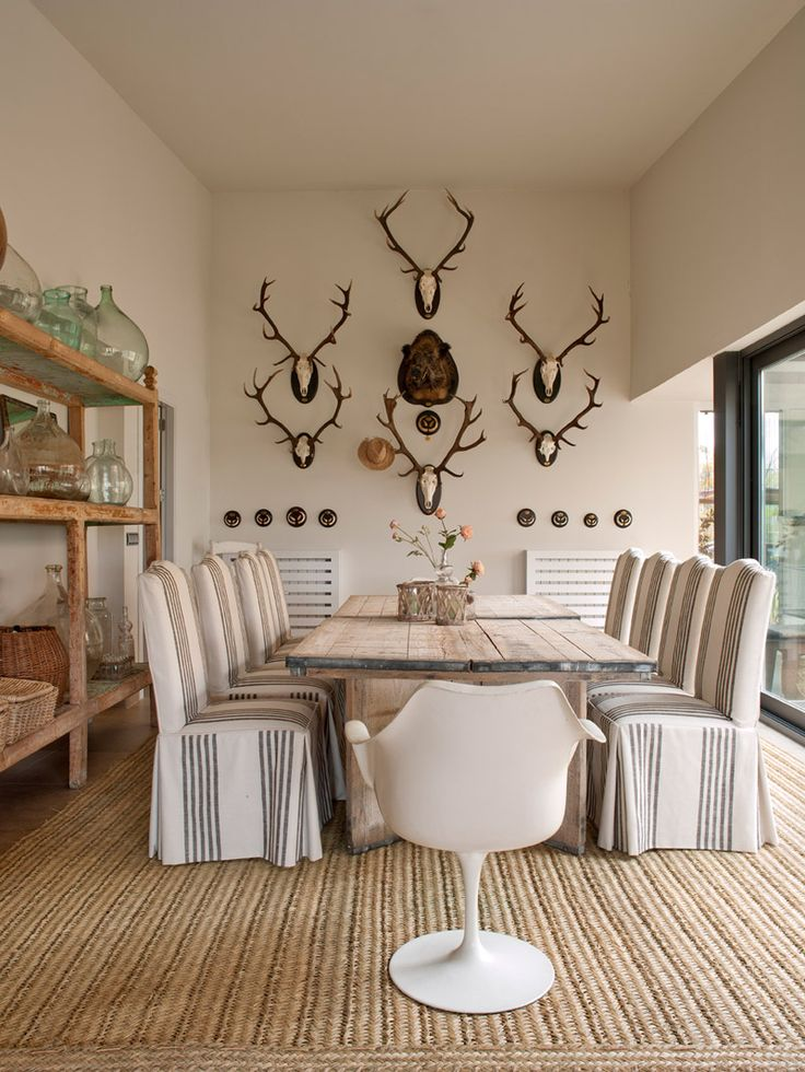 living room with deer mounts 25 best ideas about european mount on 19010