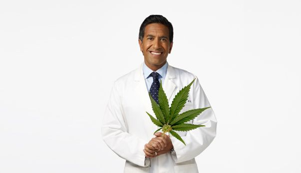 Chief Practicing Neurosurgeon of CNN Talks about Benefits of Medical Marijuana