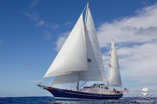 The R/V Martin Sheen sailing