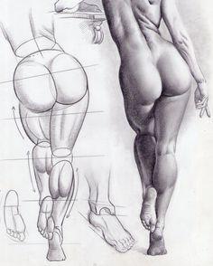 dibujos de anatomia femenina - Buscar con Google