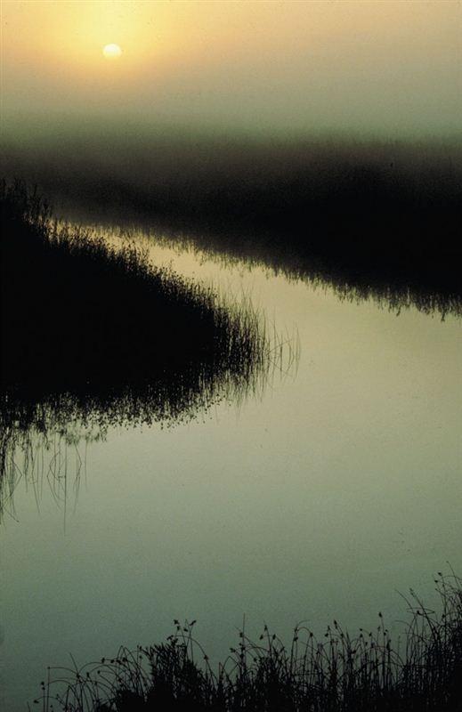 Wilderness, #SouthAfrica ~   Samantha Black