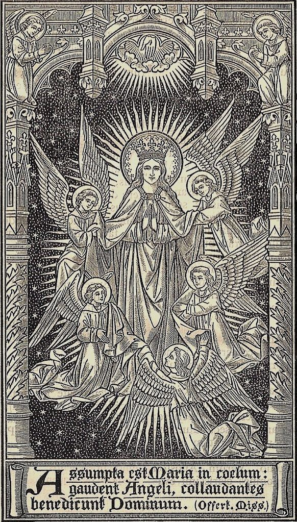 .May the Mother of God and Queen of Heaven love and protect you all.
