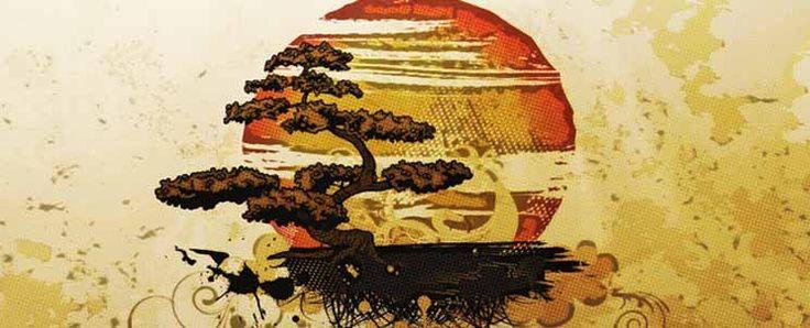 Bonsái para principiantes paso a paso  http://www.infotopo.com/exteriores/jardin/bonsai-para-principiantes-paso-paso/