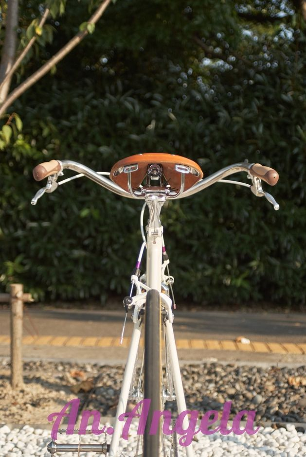 Customized urban bicycle - Pedal Room