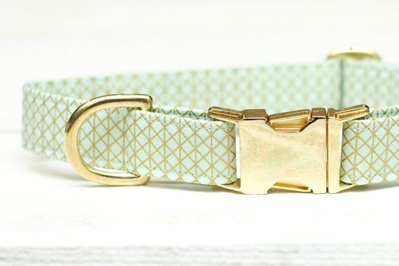 Canine Collar, Woman Canine Collar, Mint and Gold Canine Collar, Boy Canine Collar, Feminine Canine Collar, Pet Collar, Blue, Metallic {Hardware} Canine Collar
