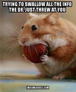 #aplasticanemia Funny But True: Memes - imsomebodee.com