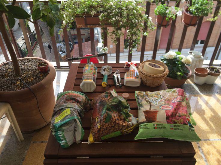 Giardinaggio e dintorni
