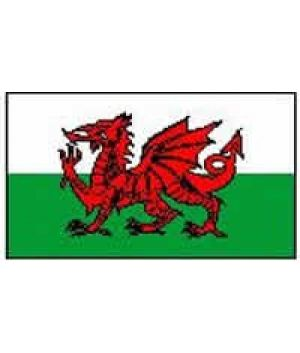 Wales Flag 5ft X 3ft  Buy Online: https://www.wholesaleconnections.co.uk/product-detail/wn/Wales-Flag-5ft-X-3ft  Like us on facebook.com/ukwholesalebusiness Email us: info@wholesaleconnections.co.uk Follow us on: twitter.com/Wholesale_Conn