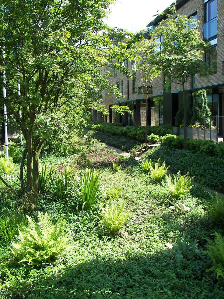 Accordia, Cambridge. Landscape architecture by Bath-based landscape architects Grant Associates.