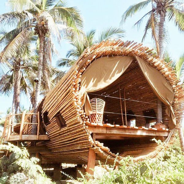 1000 Images About Crazy Tree Homes Houses On Pinterest