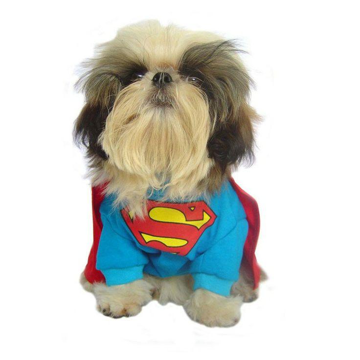 Supermaaaaaaan Dog Costume!