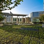 Duke Medicine Pavilion: A Serene External Space for both Patients and Visitors - Archute