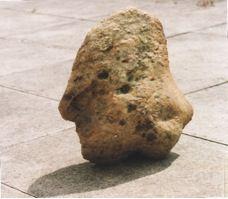 Sarsen head from Waden Hill. SF 84. (c) Terence Meaden