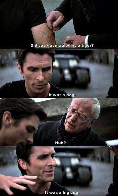The Dark Knight. one heck of a dog! #Batman