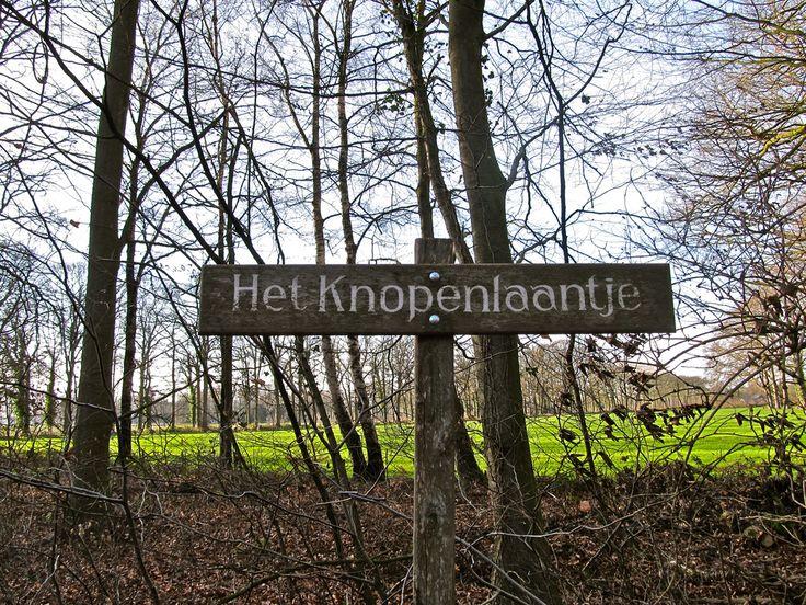 In de buurt van Kasteel Vorden is het knopenlaantje.   Flickr - Photo Sharing!
