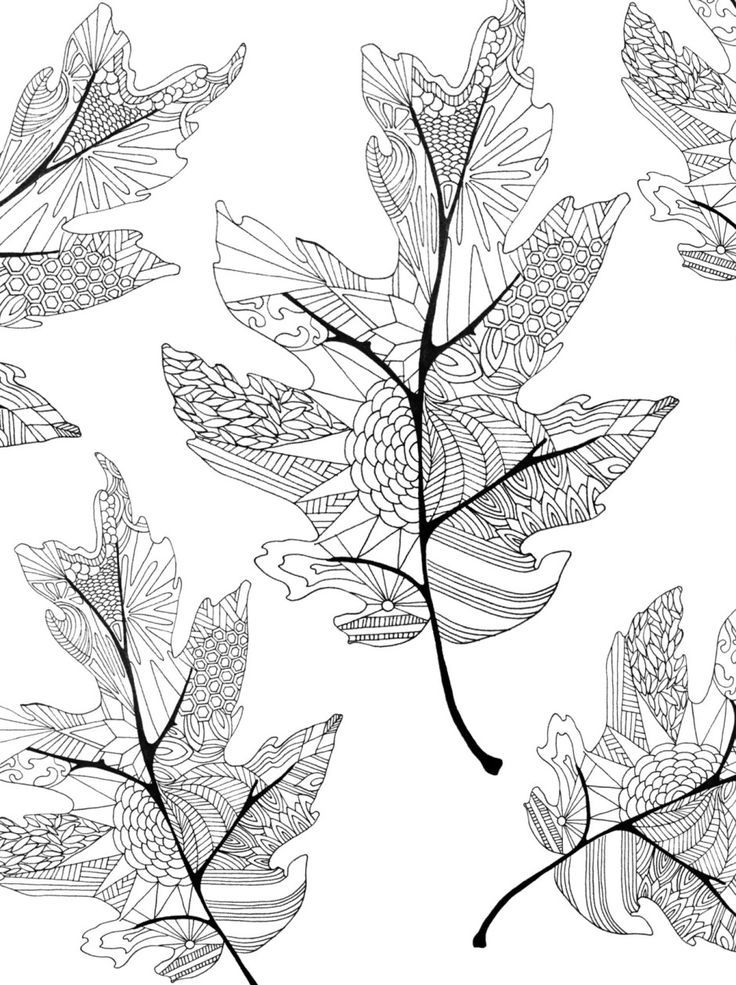 Fall leaves multi coloring page -Twineandtable