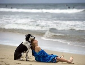 resting: Beaches, Animals, Life, Best Friends, Dogs, Bestfriends, Pet, The Beach, Photography