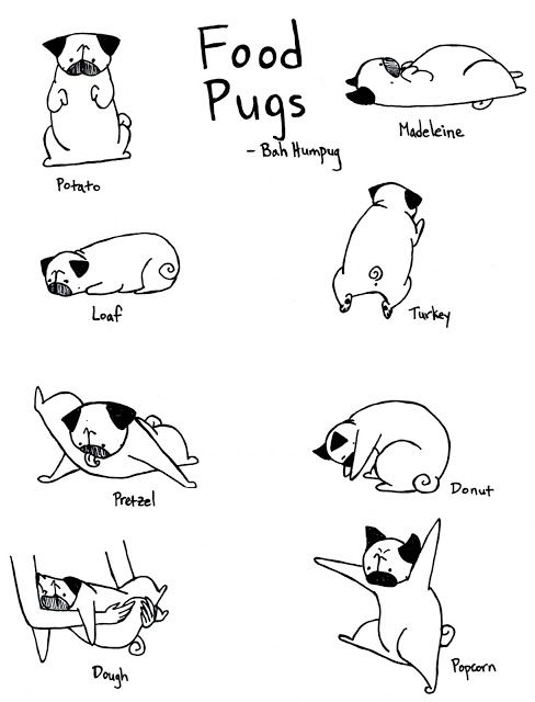 Food Pugs (Mine has mastered the Loaf and the Dough; how
