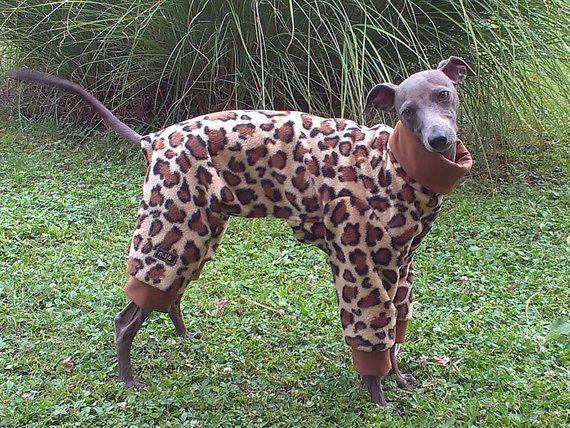 Italiaanse windhond Fleece pyjama / Italiaanse van majStyle op Etsy