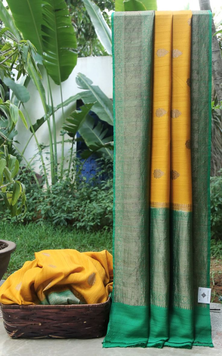 This Benares tussar georgette is in gold yellow with gold zari bhuttas all over. The border and pallu are in complementing pine green with gold zari work giving it a bright finish