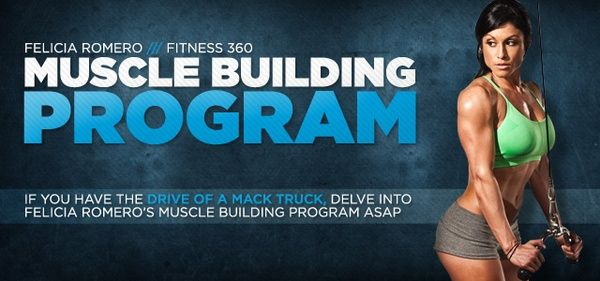 muscle building you-get-what-you-work-for