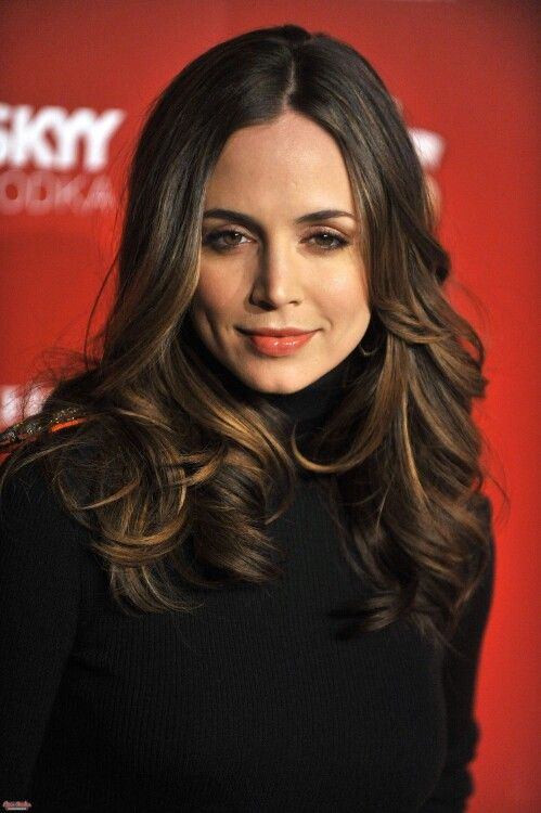 Light brown golden highlight mid-length  Hair - Eliza Dushku