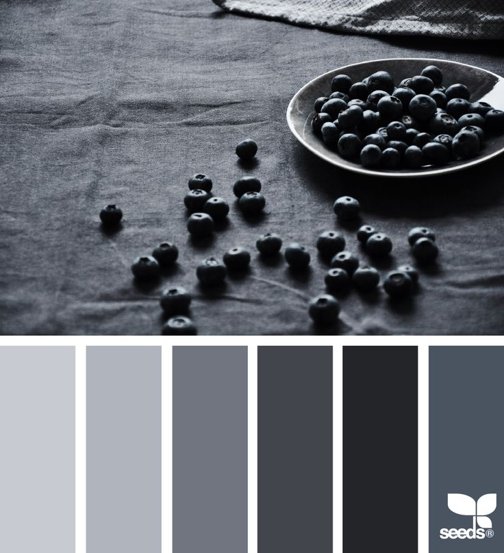 The sort grey tones that could appear in my cook book.