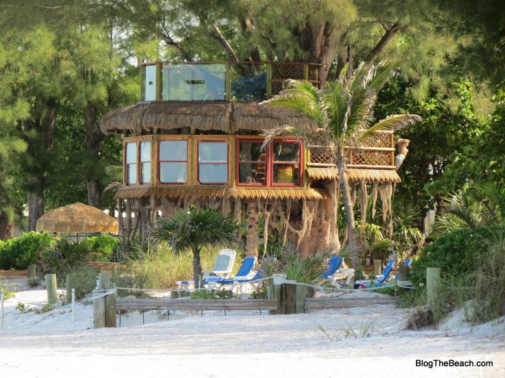 Holmes Beach Tree house. Built right on the beach in a huge Australian pine tree.