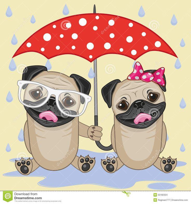 chapeus de chuva para caes ♥vanuska♥