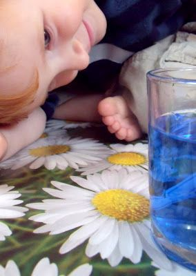 Early Years Science Experiment - Absorption