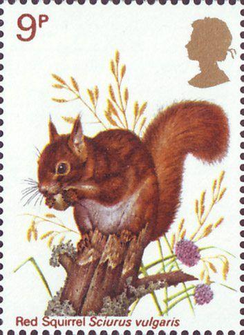 British Wildlife 9p Stamp (1977) Red Squirrel