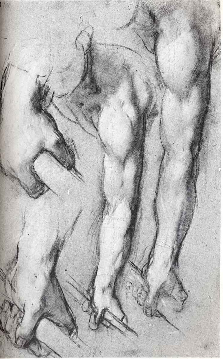 hands by Da Vinci