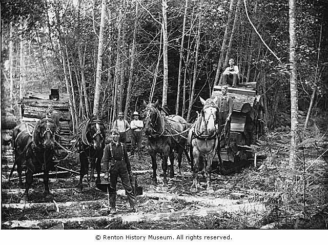 Skid road logging 2, Seattle, Wa. | History | History ...