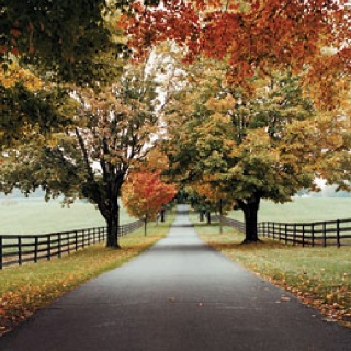 Thanksgiving Travel Deals In Middleburg Va