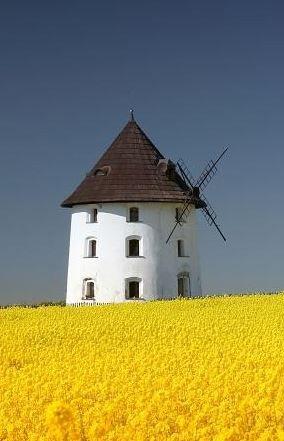 Windmill at Vrátno (Central Bohemia), Czechia