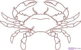 Draw a crab