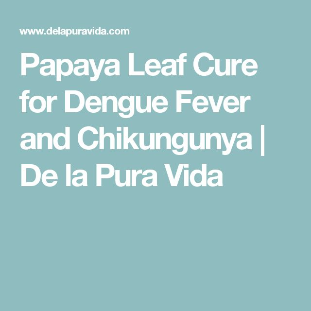 Papaya Leaf Cure for Dengue Fever and Chikungunya | De la Pura Vida