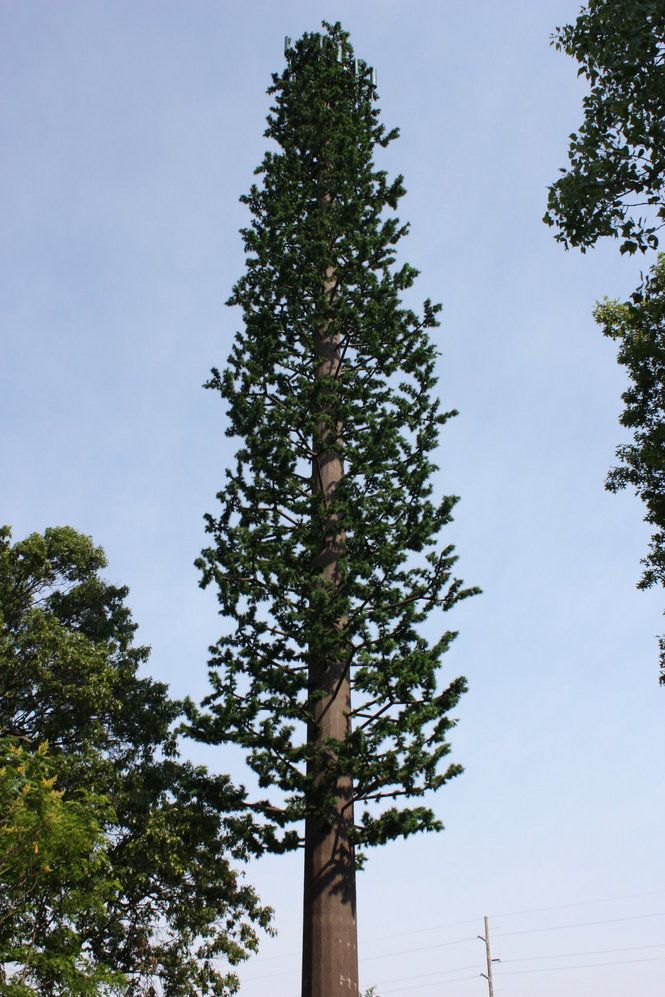 A cell phone tower resembling a pine tree: Portage gets ...