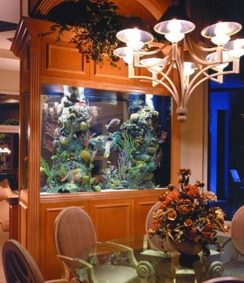 built-in room divider fish tank! Could be done with a contemporary look too.