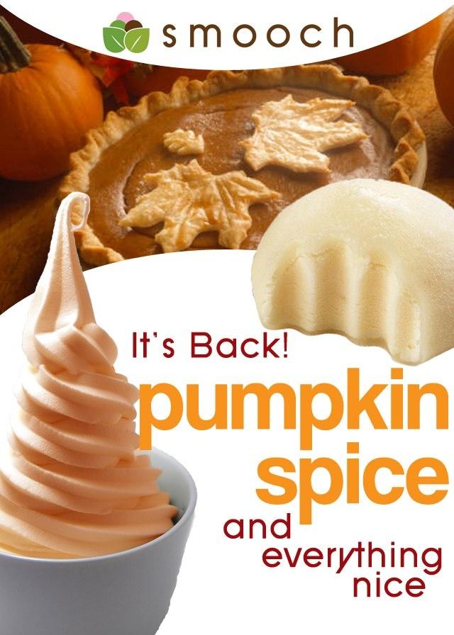 Celebrate Fall with pumpkin spice froyo from @Smooch Frozen Yogurt & Mochi