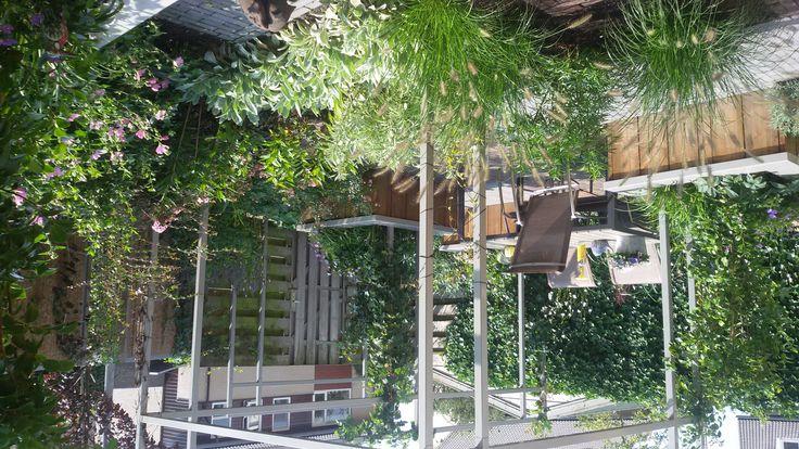Kleine achtertuin 60 m2 met schuine erfgrens nijkerk for Tuinontwerp schuine lijnen