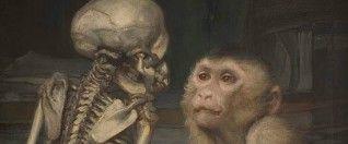IdeaFixa » Parapsicologia, Darwinismo e Schopenhauer no final do séc XIX
