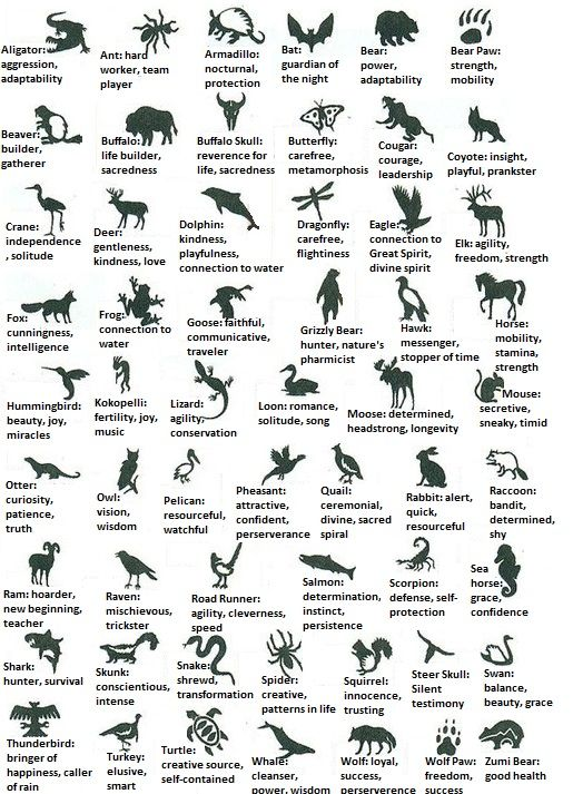 Native American Animal Symbols And Their Meanings Meanings By
