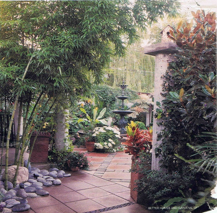 393 best images about green thumb on pinterest gardens for Tropical courtyard garden design