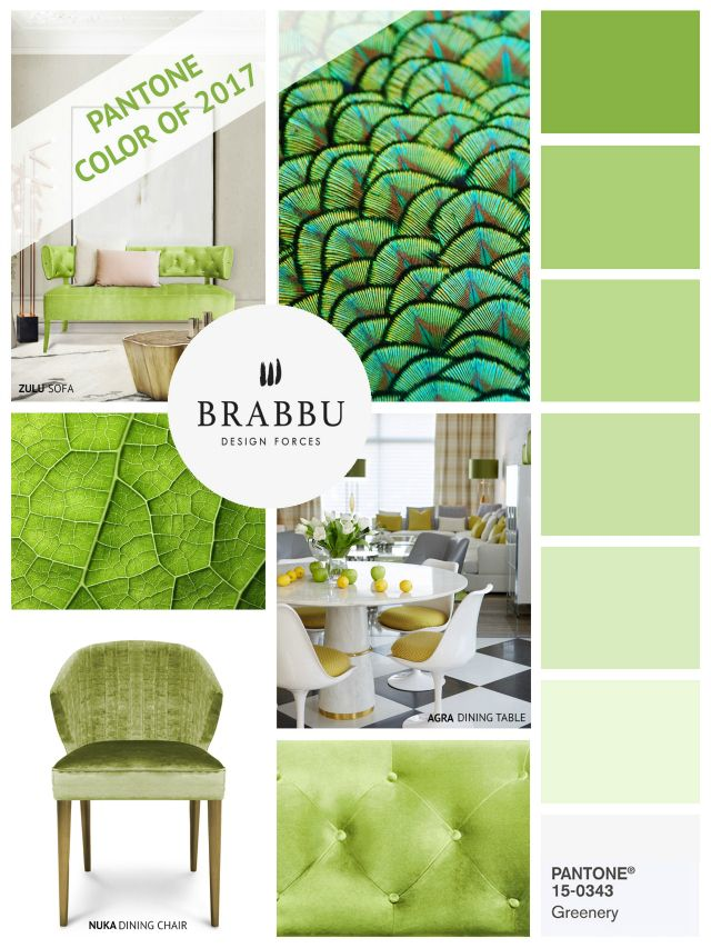 How To Decorate With Greenery, Pantone Color Of The Year 2017 | Spring  Color Trends