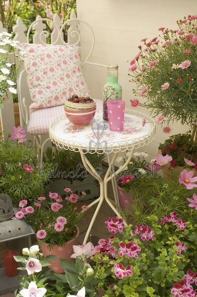 Oh, so Shabby gardening :)